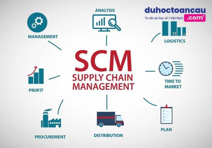 Du học Singapore ngành logistics và chuỗi cung ứng
